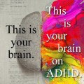 ADHD Clinical Psychologist – source: https://fbcdn-photos-a.akamaihd.net/hphotos-ak-snc7/313967_10151078266168846_127270288_n.jpg